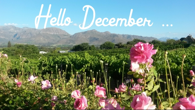 Hello December - pic taken at Grande Roche Hotel (C) Roseanna McBain