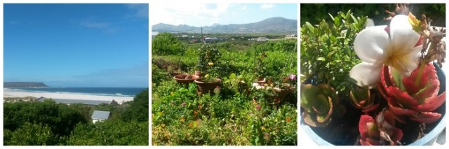 Noordhoek Scenery (C) Rambling with Rose (Copy)