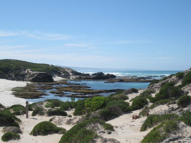 De Hoop Nature Reserve (C) Rambling with Rose (251)
