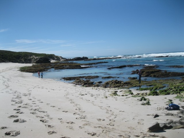 De Hoop Nature Reserve (C) Rambling with Rose (261)