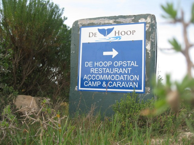 De Hoop Nature Reserve (C) Rambling with Rose (467)