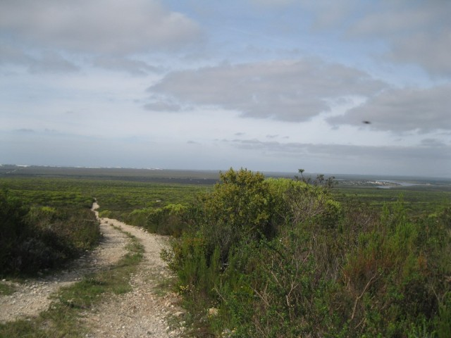 De Hoop Nature Reserve (C) Rambling with Rose (473)